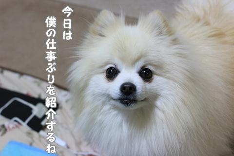 IMG_5581.jpg