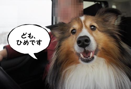 なかむら6