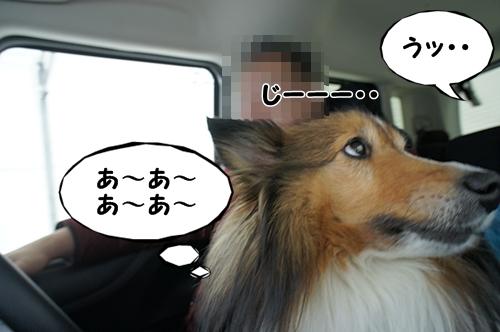 なかむら8