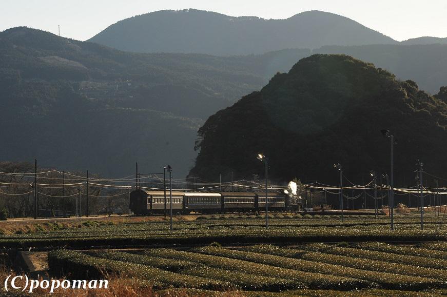 DSC_1578 - コピー2018 1 14 大井川鐵道 抜里~家山 (2) 871 580 popoman