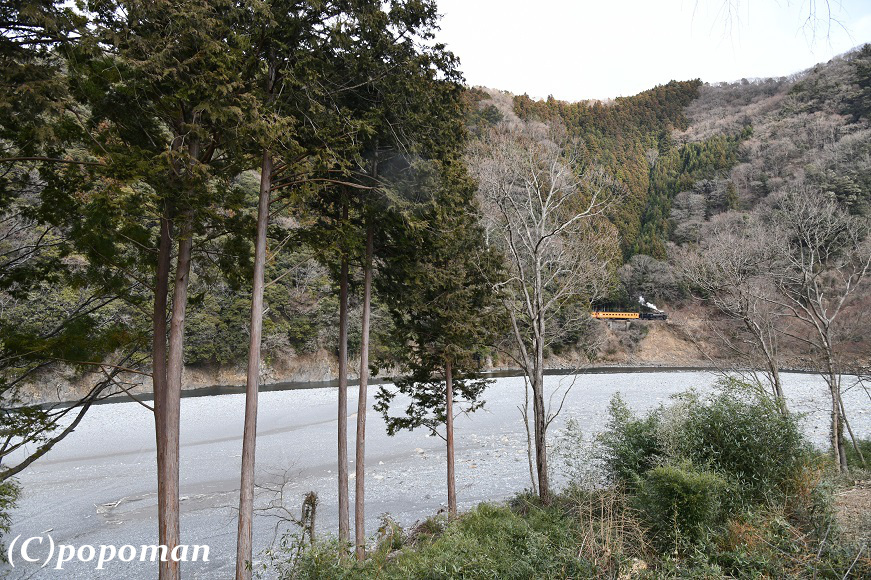 DSC_0988 - コピー2018 2 17 大井川鐵道 地名~川根温泉笹間渡 871 580 popoman
