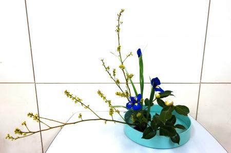 DSC00888-盛り花180122