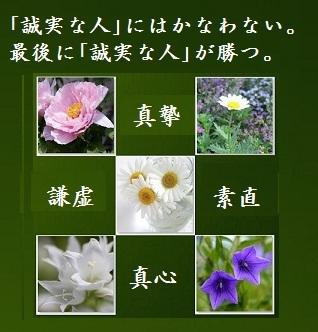 誠実green