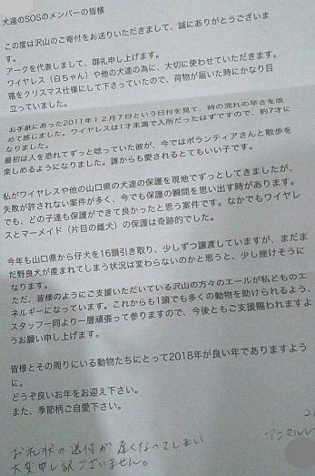 アニマルレフュージ関西さんからお礼のお手紙きました白ちゃん=ワイヤレスちゃんも片目を潰されたちびちゃんも元気です1