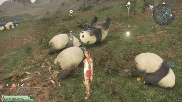 【真・三國無双8】かわいい『パンダ』を発見~パンダの居場所はココ!~