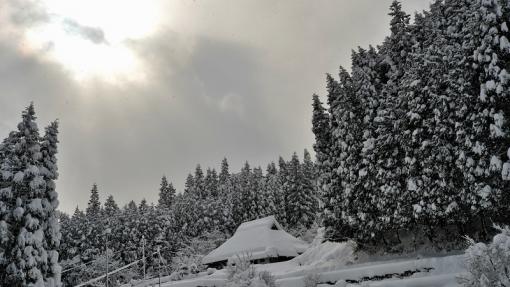 1304大雪181113