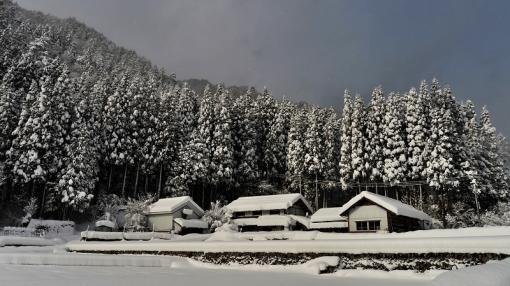 1310大雪181114