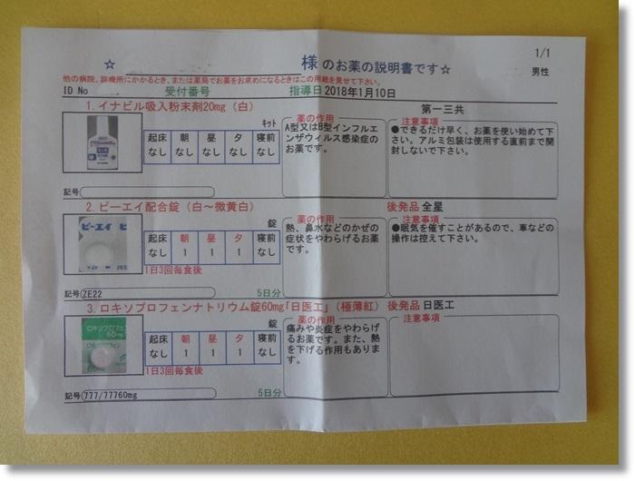 インフルA DSC00960