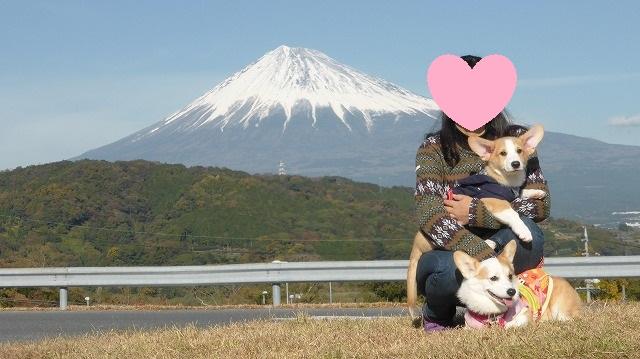 富士山とゆめ