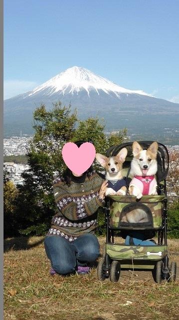 富士山とゆめ2