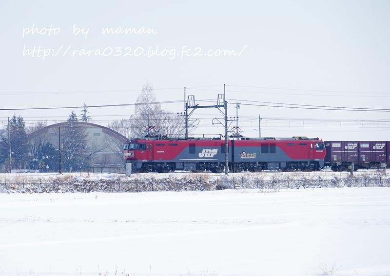 DSC00587 a bbbbbbb