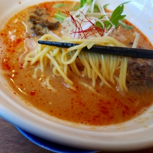 極や 四川担々麺 麺スープ