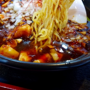 満里新津 黒麻婆麺 麺スープ