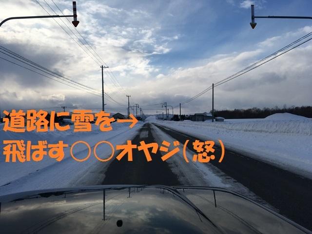 IMG_8356_PP.jpg