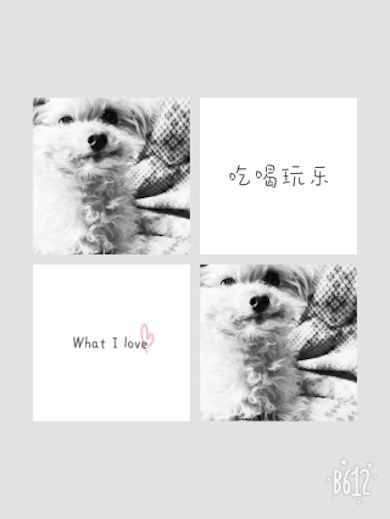 みかん8才の誕生日No2