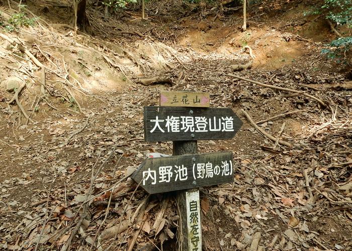 2018,2,3立花山-35