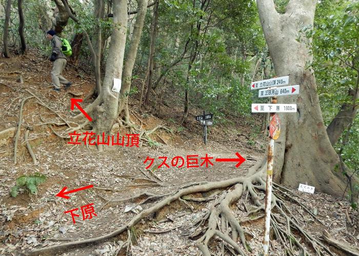 2018,2,3立花山-13
