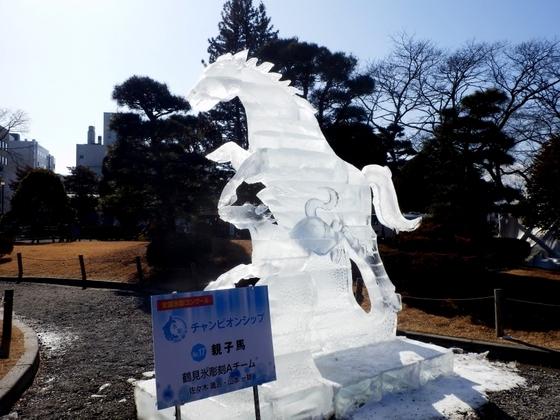 松本城氷彫 (50)