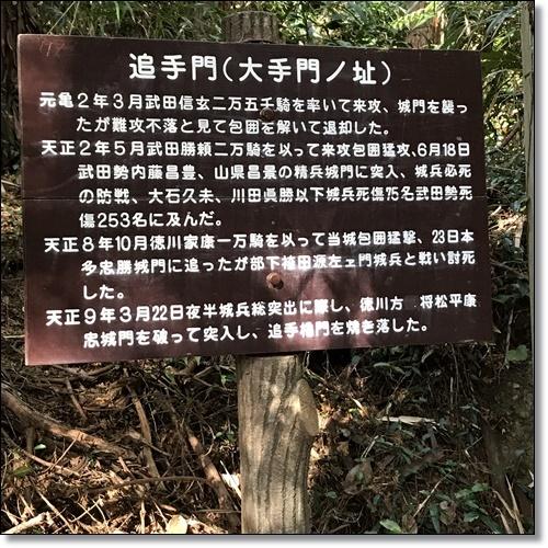御前崎IMG_3540-20180107