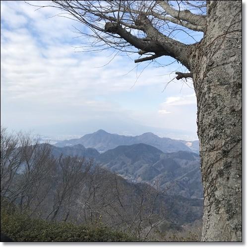 伊豆パノラマパークIMG_4054-20180210
