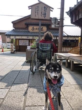 おかげ横丁2017赤福本店2