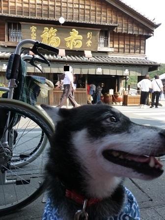 おかげ横丁2017赤福本店20