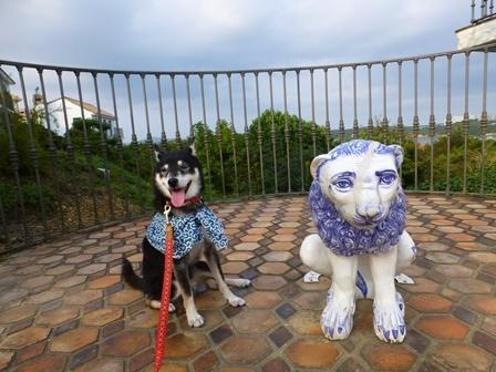 志摩地中海村お散歩21