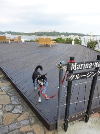 志摩地中海村お散歩33