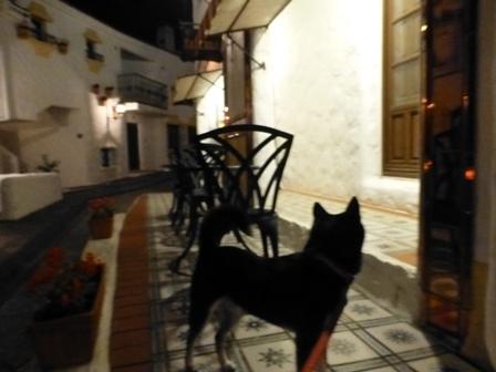 志摩地中海村夜のお散歩 (2)