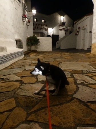 志摩地中海村夜のお散歩 (4)