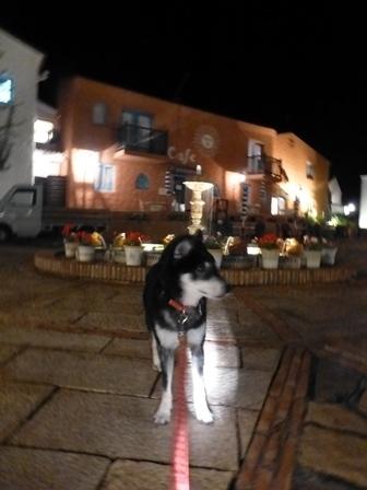 志摩地中海村夜のお散歩 (8)