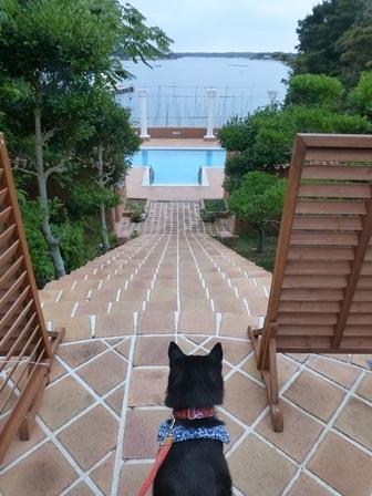 志摩地中海村朝のお散歩18