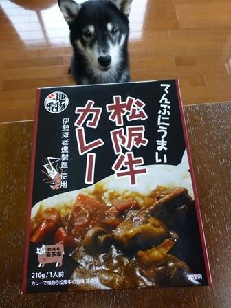 てんぷにうまい松阪牛カレー1