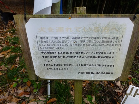 みのお記念の森 (13)