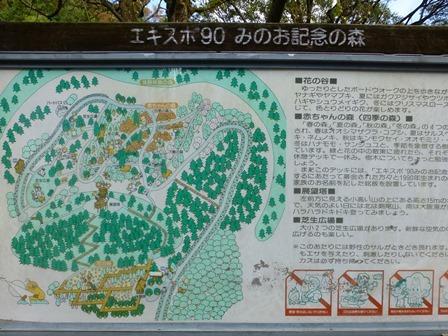 みのお記念の森 (41)