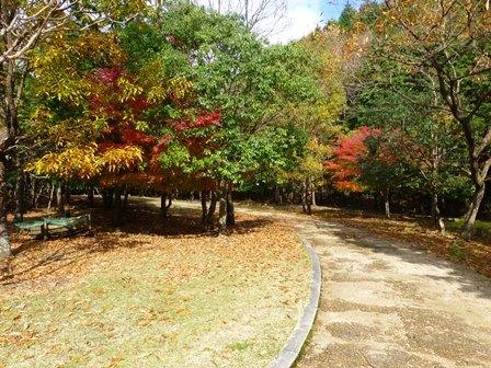 みのお記念の森 (47)