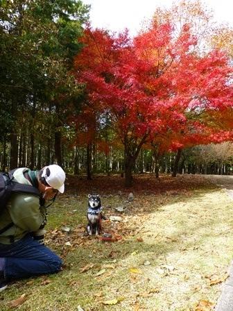 みのお記念の森 (58)
