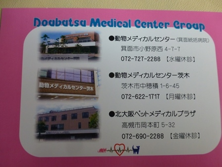 01062018動物病院 (25)