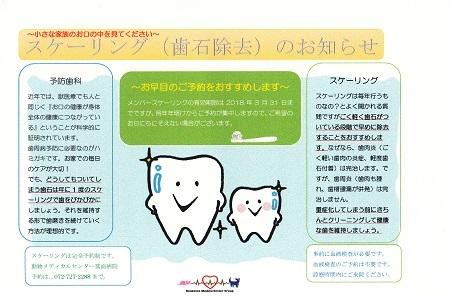 2018歯石除去2