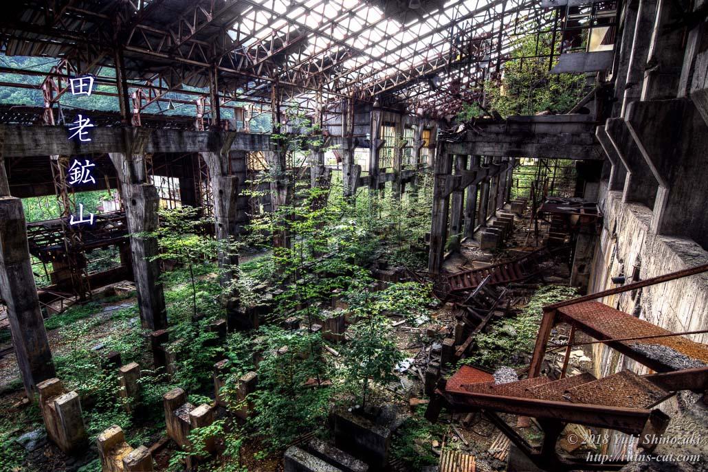 【田老鉱山】緑の神殿