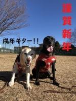 IMG_7241_shinnen.jpg