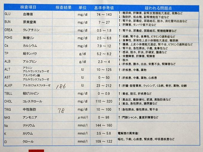 blogDSC_5289.jpg