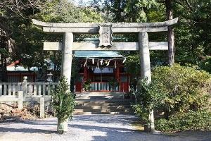 神谷神社の椿1