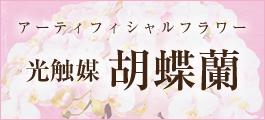 nagomi-bnr.jpg