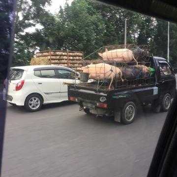 20171230-Bali (51)-加工