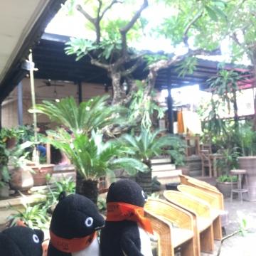 20171230-Bali (61)