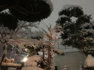 20180122-雪 (1)