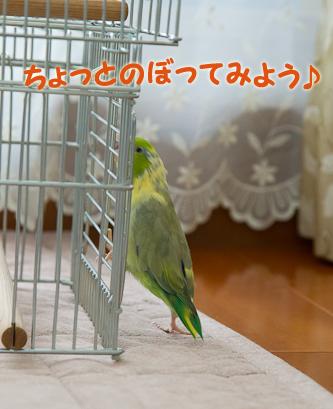 0S1W9863.jpg