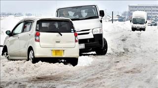 2018-02-12 雪1_0.jpg