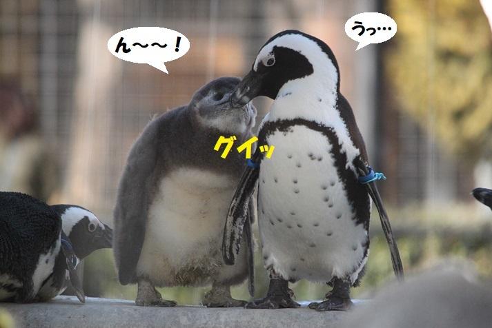 174 - コピー